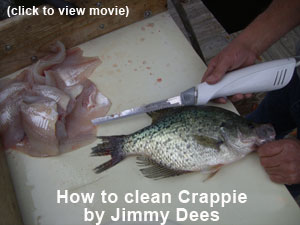 crappie cleaning video