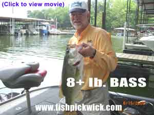 fishing_bass_pickwick_lake
